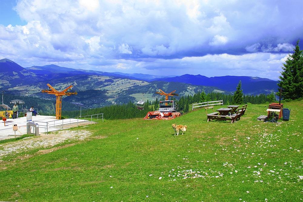 Vatra Dornei_Chique Romania (10)
