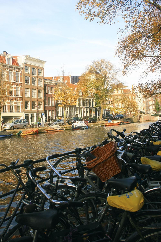 Autumn_in_Amsterdam - ChiqueRomania (38)