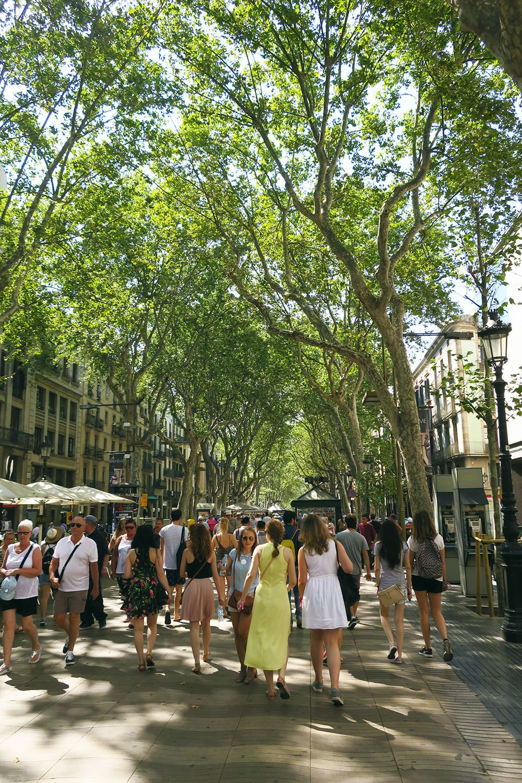barcelona-ii_chiqueromania-4